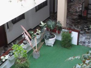 vista-desde-2do-piso-del-jardin